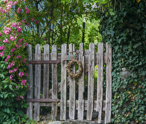 4 Ways to Make Sure Your Garden Is Gorgeous All Year Round